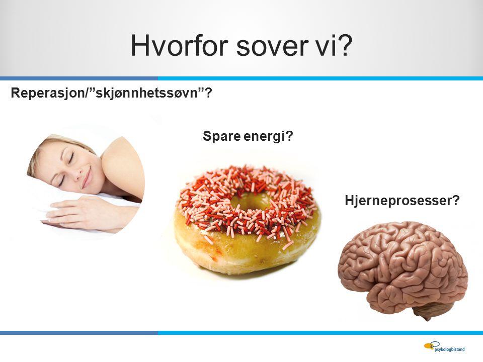 Hvorfor sover vi Spare energi Hjerneprosesser Reperasjon/ skjønnhetssøvn