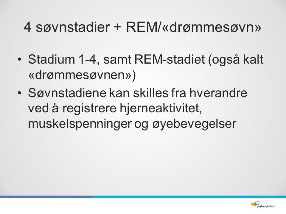4 søvnstadier + REM/«drømmesøvn» Stadium 1-4, samt REM-stadiet (også kalt «drømmesøvnen») Søvnstadiene kan skilles fra hverandre ved å registrere hjerneaktivitet, muskelspenninger og øyebevegelser