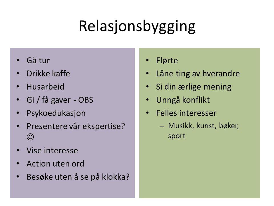 Relasjonsbygging Gå tur Drikke kaffe Husarbeid Gi / få gaver - OBS Psykoedukasjon Presentere vår ekspertise.