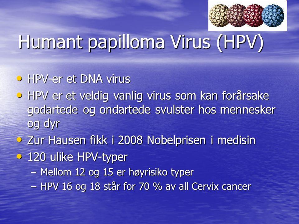 Humant papilloma Virus (HPV) HPV-er et DNA virus HPV-er et DNA virus HPV er et veldig vanlig virus som kan forårsake godartede og ondartede svulster h