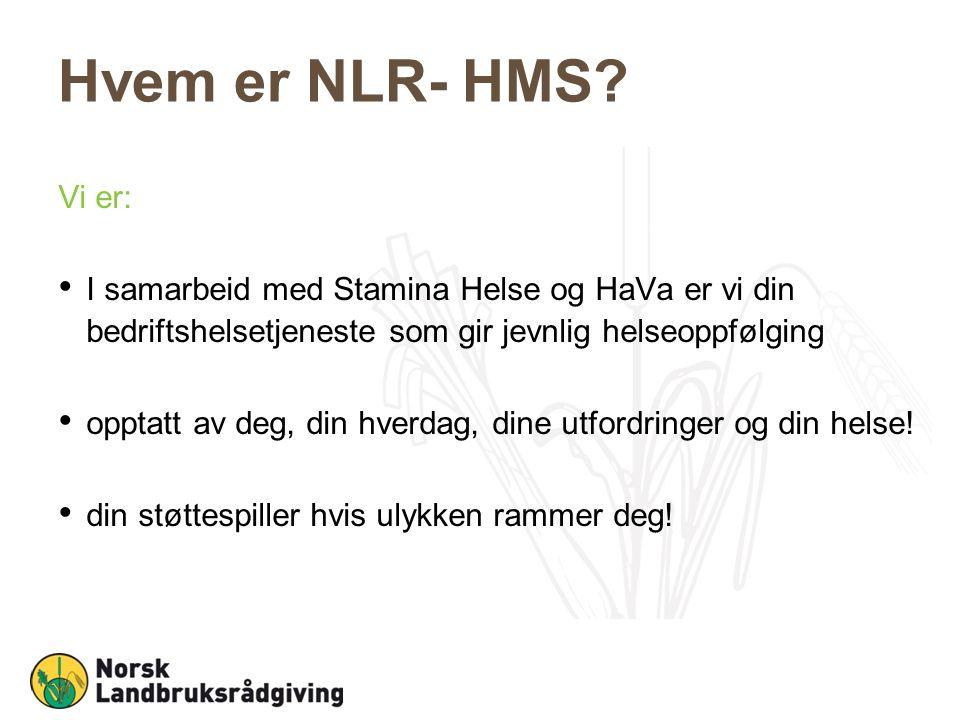 Hvem er NLR- HMS.