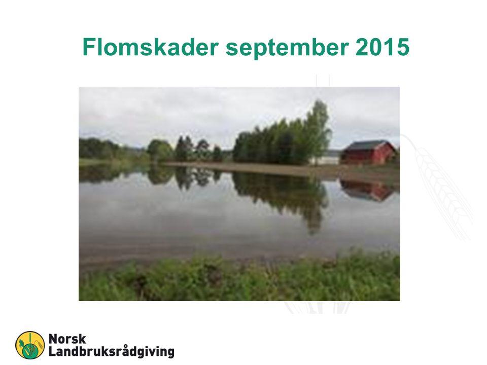 Fagmøter og kurs, psykisk helse FK-Kongsberg, 14.oktober 2015 NLR Østafjells på Gol, 21.