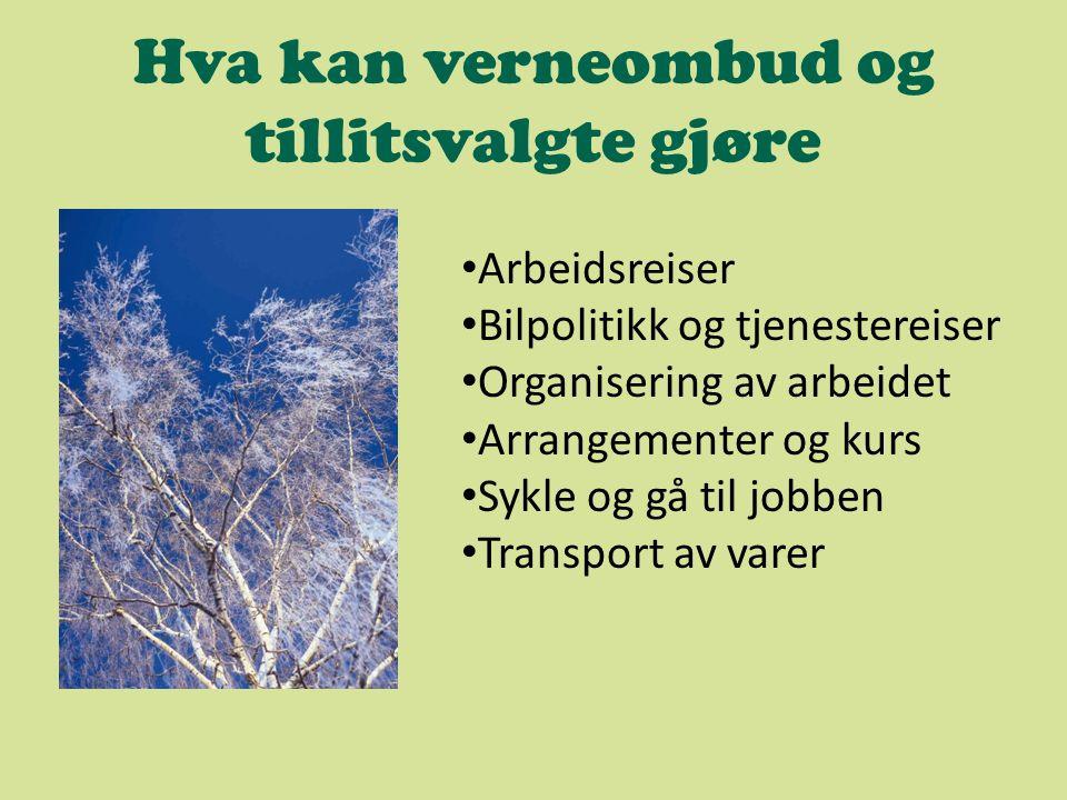 Hva kan verneombud og tillitsvalgte gjøre Arbeidsreiser Bilpolitikk og tjenestereiser Organisering av arbeidet Arrangementer og kurs Sykle og gå til jobben Transport av varer