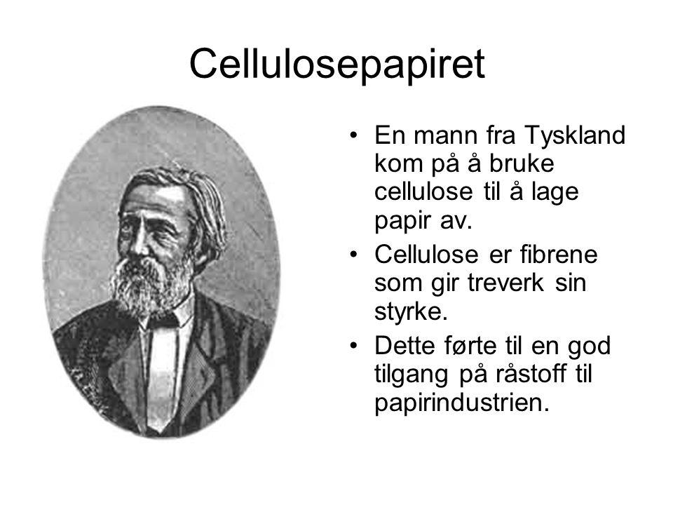 Cellulosepapiret En mann fra Tyskland kom på å bruke cellulose til å lage papir av.