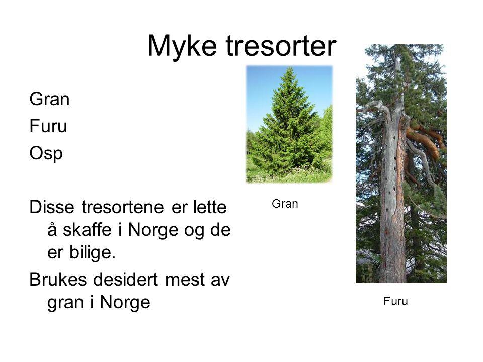 Myke tresorter Gran Furu Osp Disse tresortene er lette å skaffe i Norge og de er bilige.