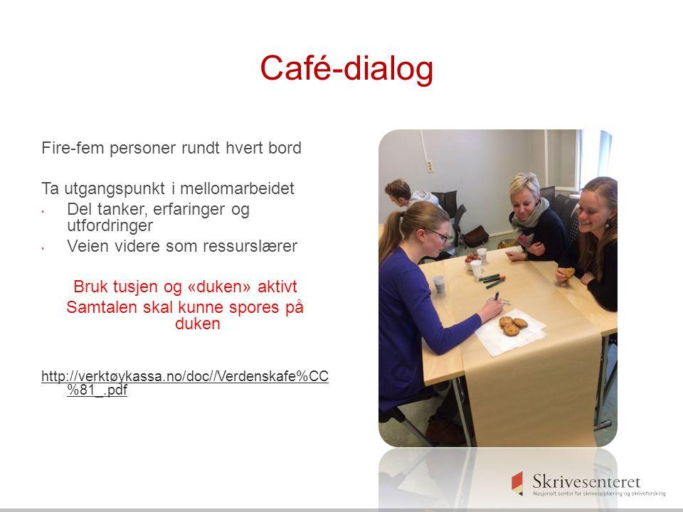 Café-dialog Fire-fem personer rundt hvert bord Ta utgangspunkt i mellomarbeidet Del tanker, erfaringer og utfordringer Veien videre som ressurslærer Bruk tusjen og «duken» aktivt Samtalen skal kunne spores på duken http://verktøykassa.no/doc//Verdenskafe%CC %81_.pdf