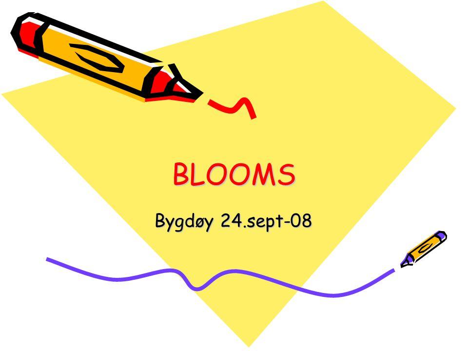 BLOOMS Bygdøy 24.sept-08