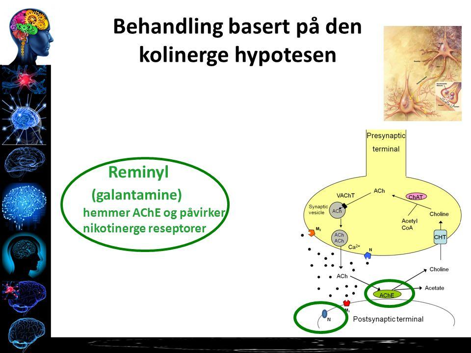 N Behandling basert på den kolinerge hypotesen Reminyl (galantamine) hemmer AChE og påvirker nikotinerge reseptorer
