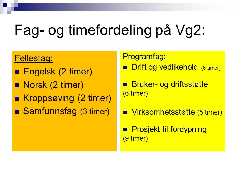 Fag- og timefordeling på Vg2: Fellesfag: Engelsk (2 timer) Norsk (2 timer) Kroppsøving (2 timer) Samfunnsfag (3 timer) Programfag: Drift og vedlikehold (6 timer) Bruker- og driftsstøtte (6 timer) Virksomhetsstøtte (5 timer) Prosjekt til fordypning (9 timer)