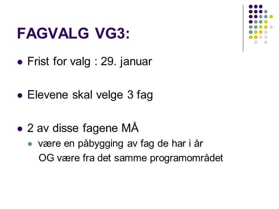 PROGRAMOMRÅDER ved Lillehammer vgs REALFAG SAMF. /SPRÅK OG ØKONOMI