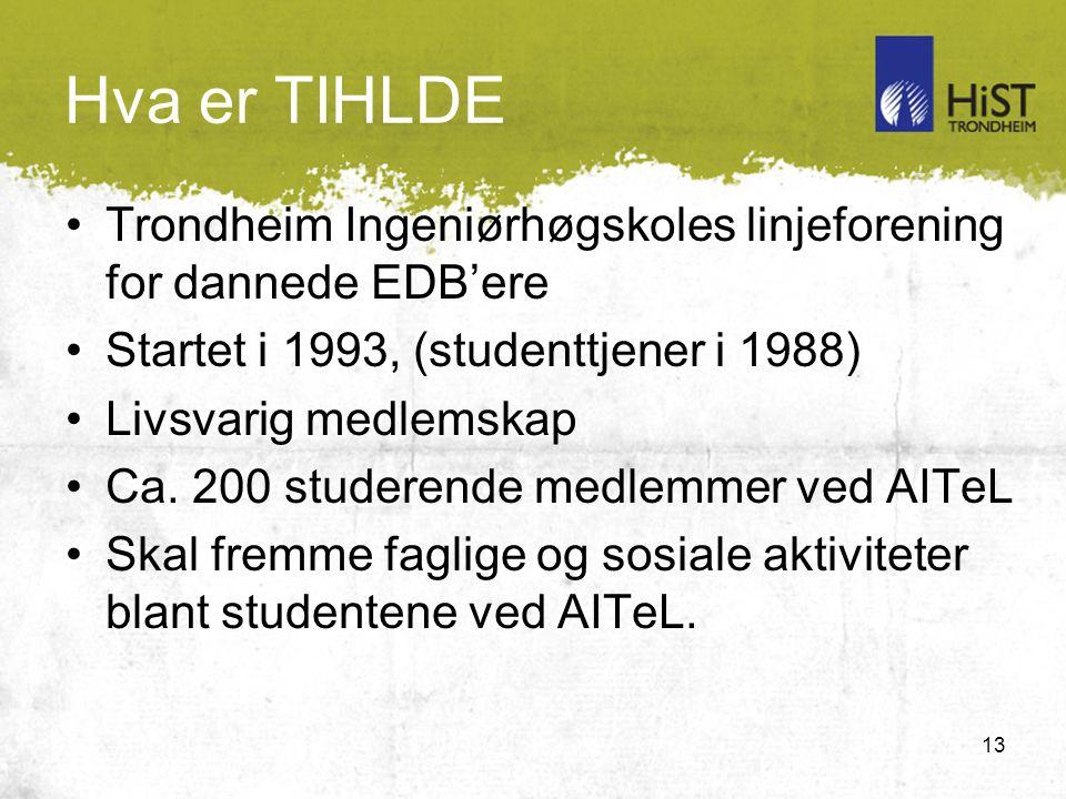 13 Hva er TIHLDE Trondheim Ingeniørhøgskoles linjeforening for dannede EDB'ere Startet i 1993, (studenttjener i 1988) Livsvarig medlemskap Ca.