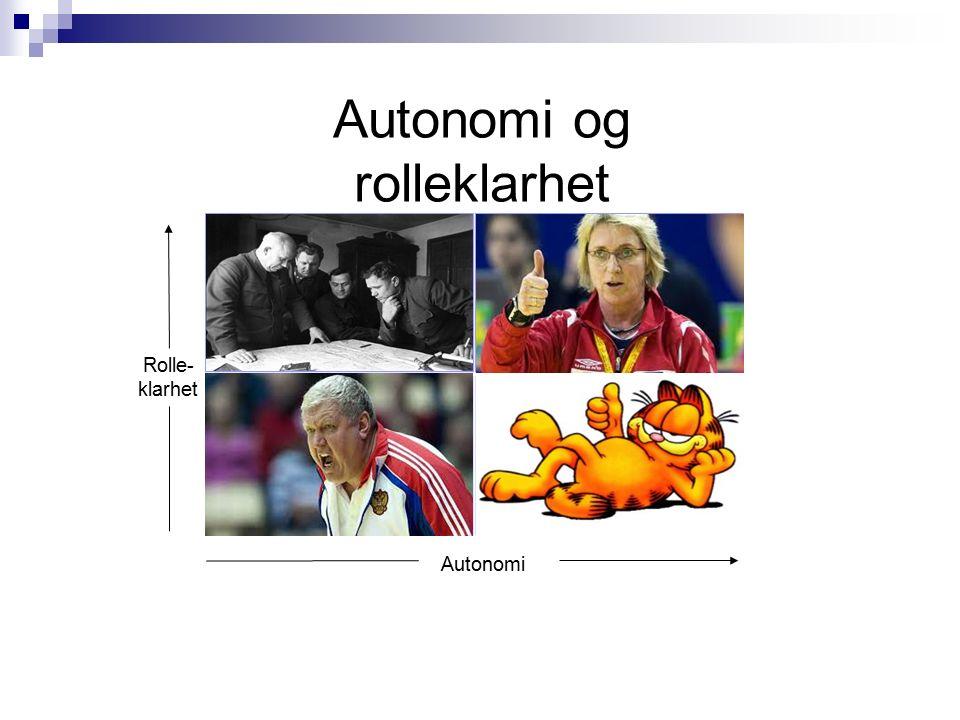 Autonomi og rolleklarhet ++ -+ +- -- Autonomi Rolle- klarhet