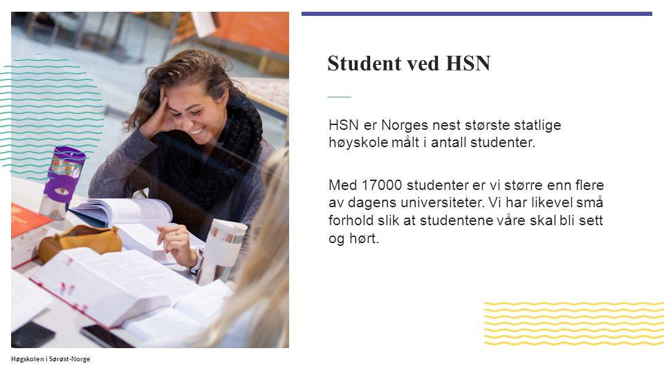 Høgskolen i Sørøst-Norge Student ved HSN HSN er Norges nest største statlige høyskole målt i antall studenter.