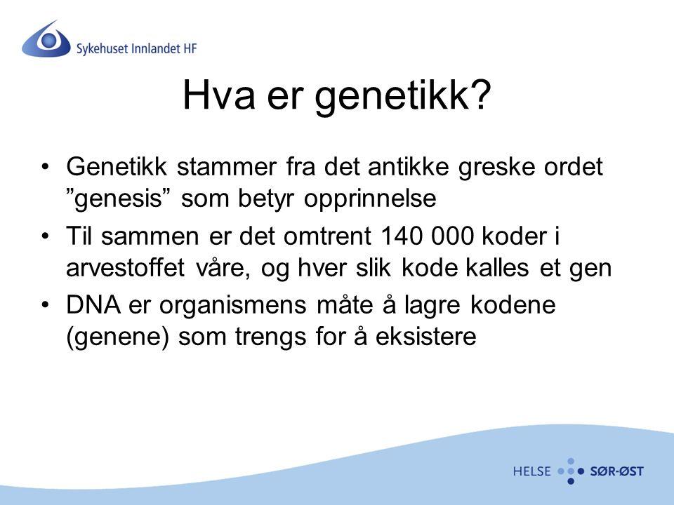 Hva er genetikk.