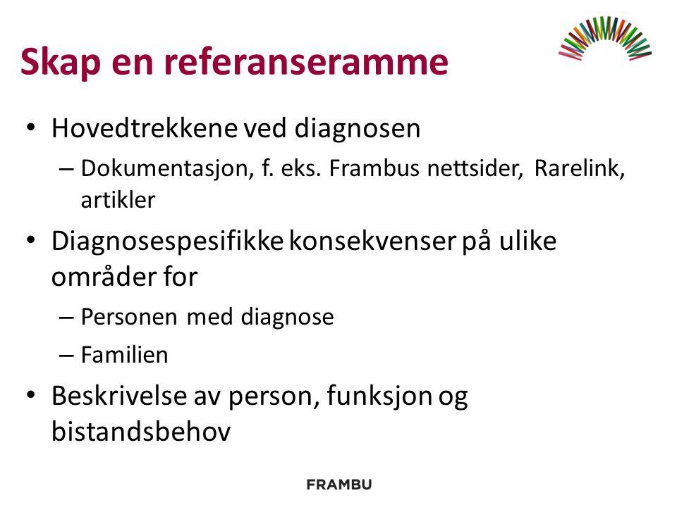 Skap en referanseramme Hovedtrekkene ved diagnosen – Dokumentasjon, f.