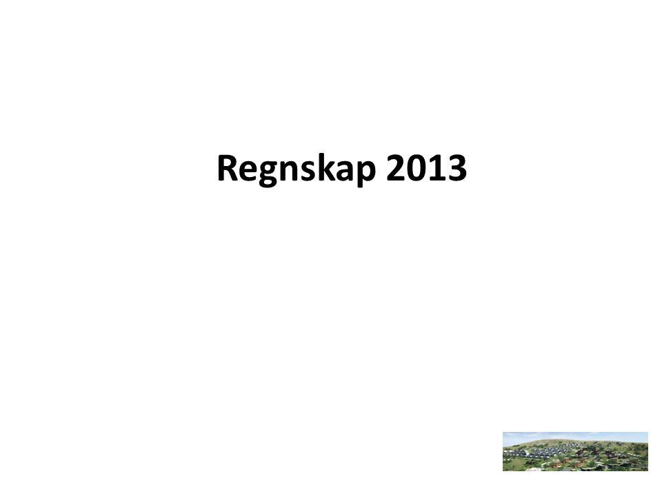 Regnskap 2013