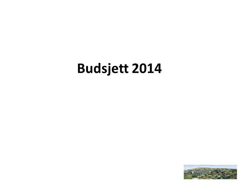 Budsjett 2014
