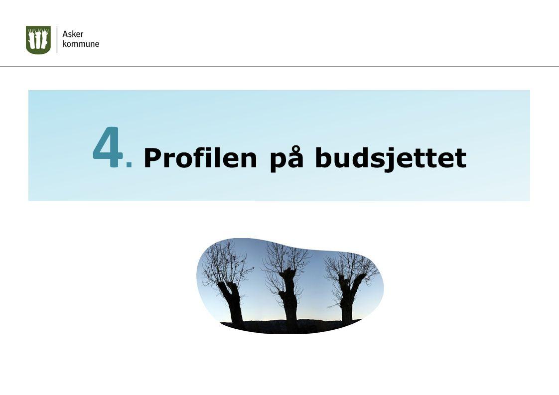 4. Profilen på budsjettet