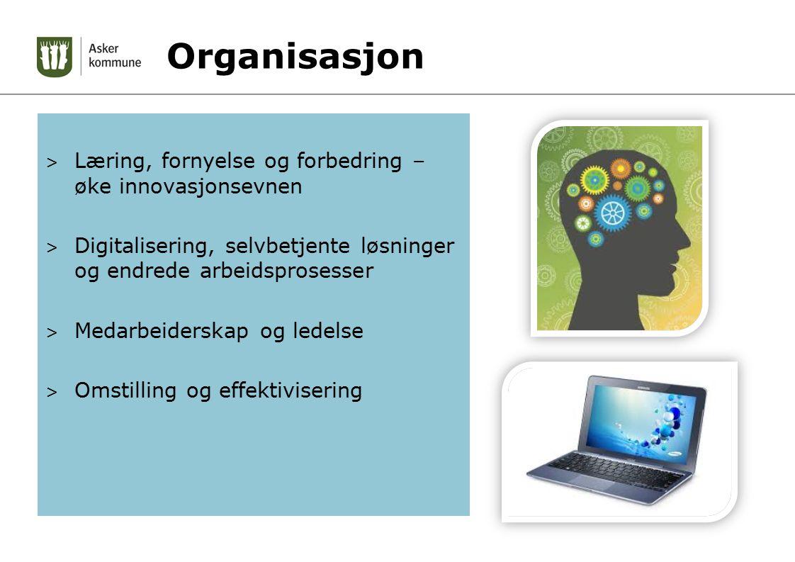 Organisasjon > Læring, fornyelse og forbedring – øke innovasjonsevnen > Digitalisering, selvbetjente løsninger og endrede arbeidsprosesser > Medarbeiderskap og ledelse > Omstilling og effektivisering