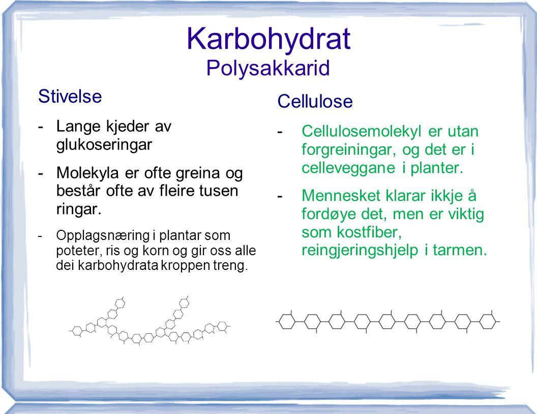 Karbohydrat Polysakkarid Stivelse -Lange kjeder av glukoseringar -Molekyla er ofte greina og består ofte av fleire tusen ringar. -Opplagsnæring i plan