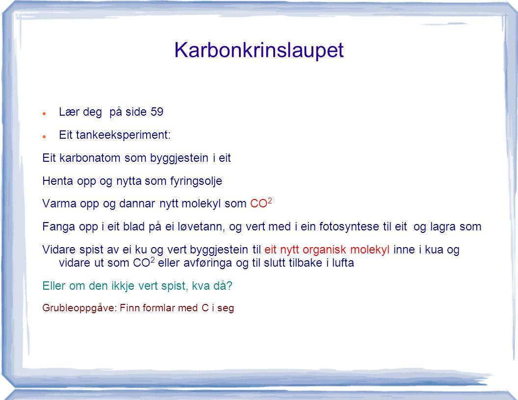 Karbonkrinslaupet Lær deg på side 59 Eit tankeeksperiment: Eit karbonatom som byggjestein i eit Henta opp og nytta som fyringsolje Varma opp og dannar