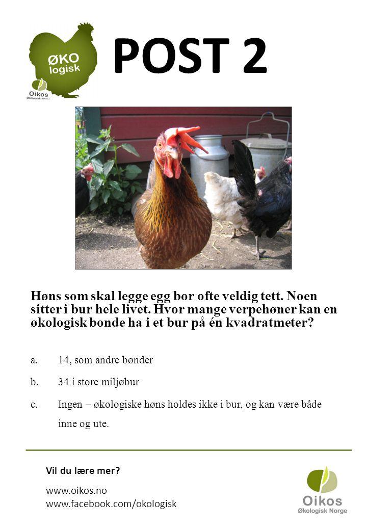 POST 2 Høns som skal legge egg bor ofte veldig tett.