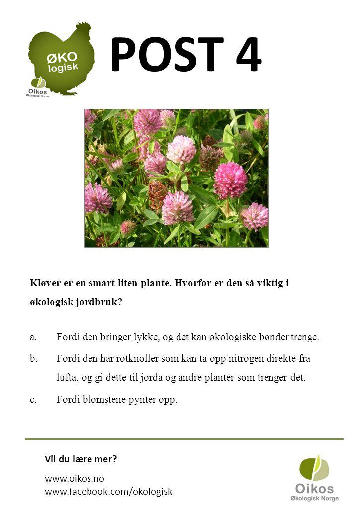 POST 4 Kløver er en smart liten plante. Hvorfor er den så viktig i økologisk jordbruk.