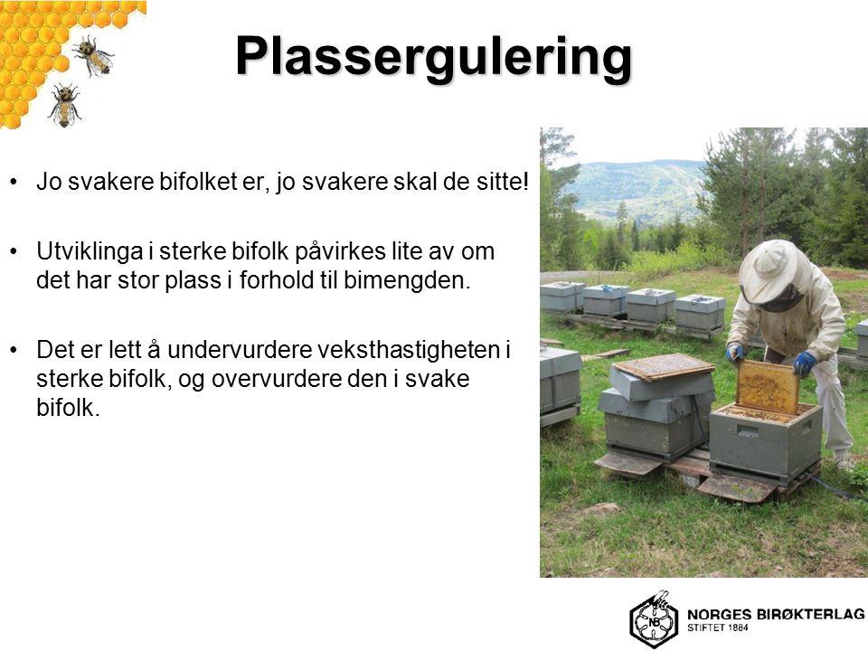 Plassergulering Jo svakere bifolket er, jo svakere skal de sitte! Utviklinga i sterke bifolk påvirkes lite av om det har stor plass i forhold til bime