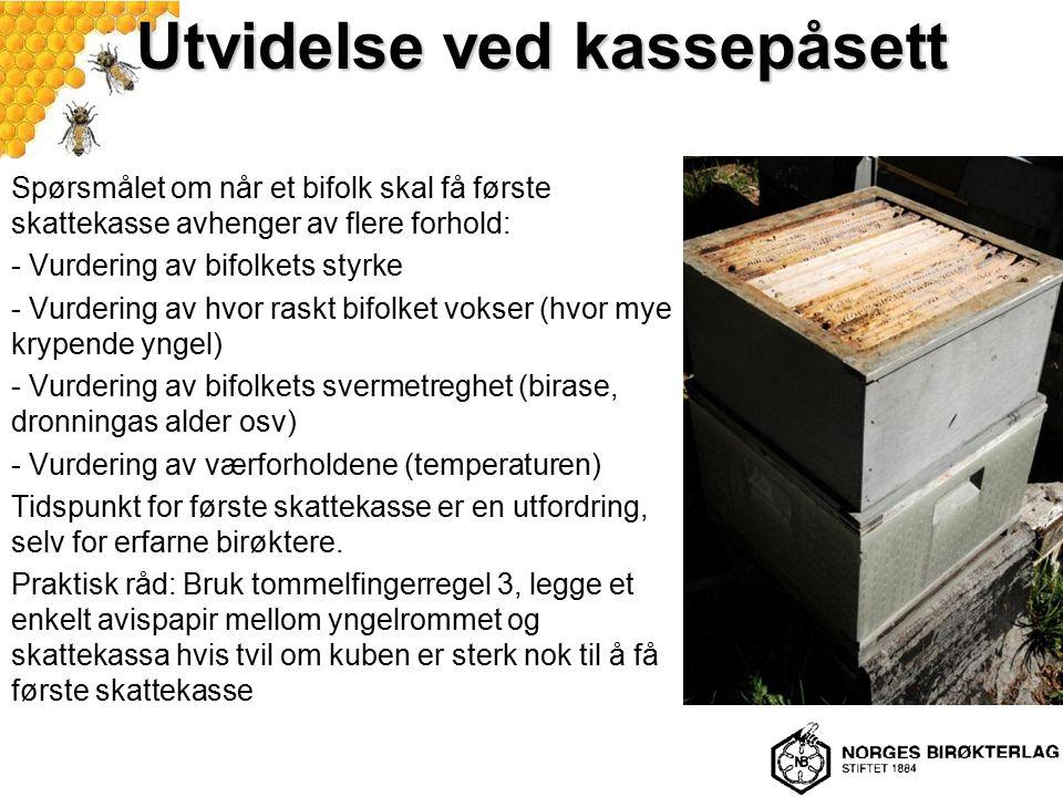 Utvidelse ved kassepåsett Spørsmålet om når et bifolk skal få første skattekasse avhenger av flere forhold: - Vurdering av bifolkets styrke - Vurderin