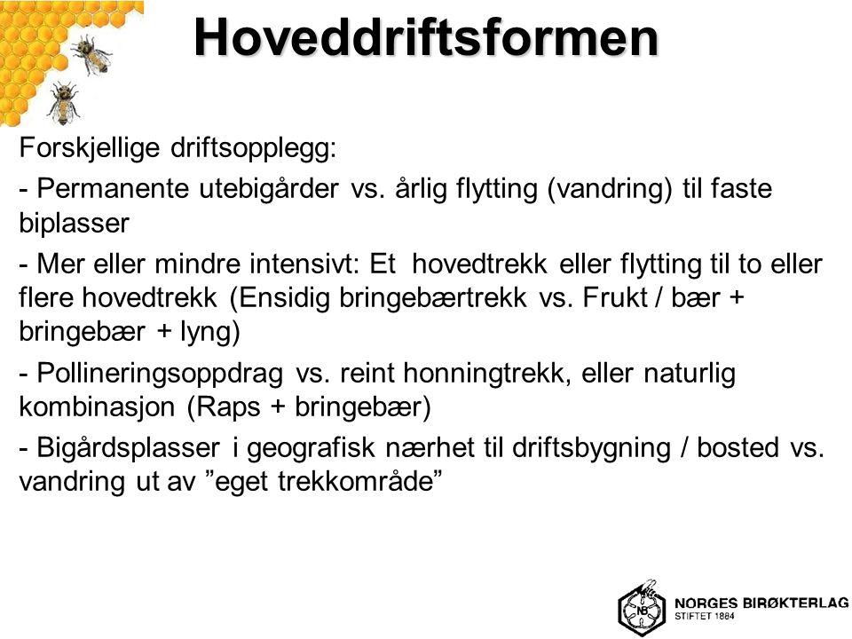 Hoveddriftsformen Forskjellige driftsopplegg: - Permanente utebigårder vs.