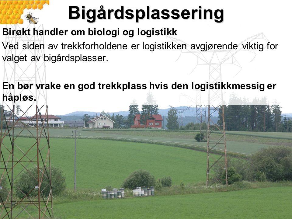 Bigårdsplassering Birøkt handler om biologi og logistikk Ved siden av trekkforholdene er logistikken avgjørende viktig for valget av bigårdsplasser. E