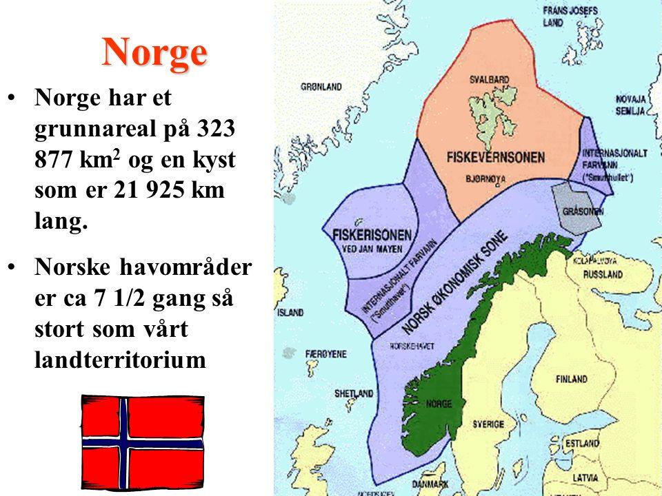 Norge har et grunnareal på 323 877 km 2 og en kyst som er 21 925 km lang.