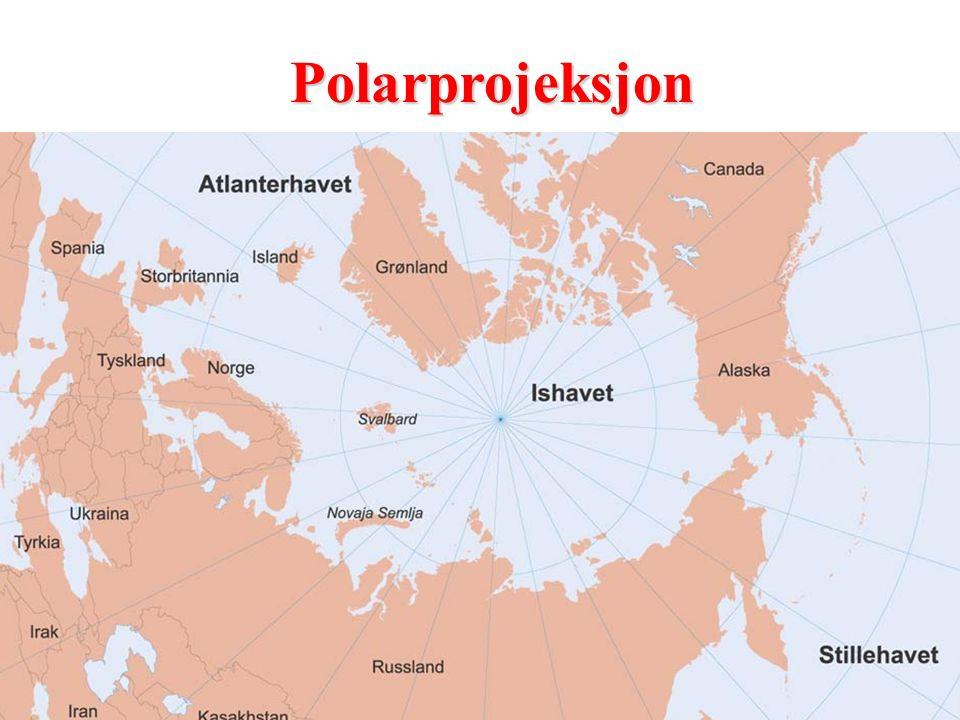 Polarprojeksjon