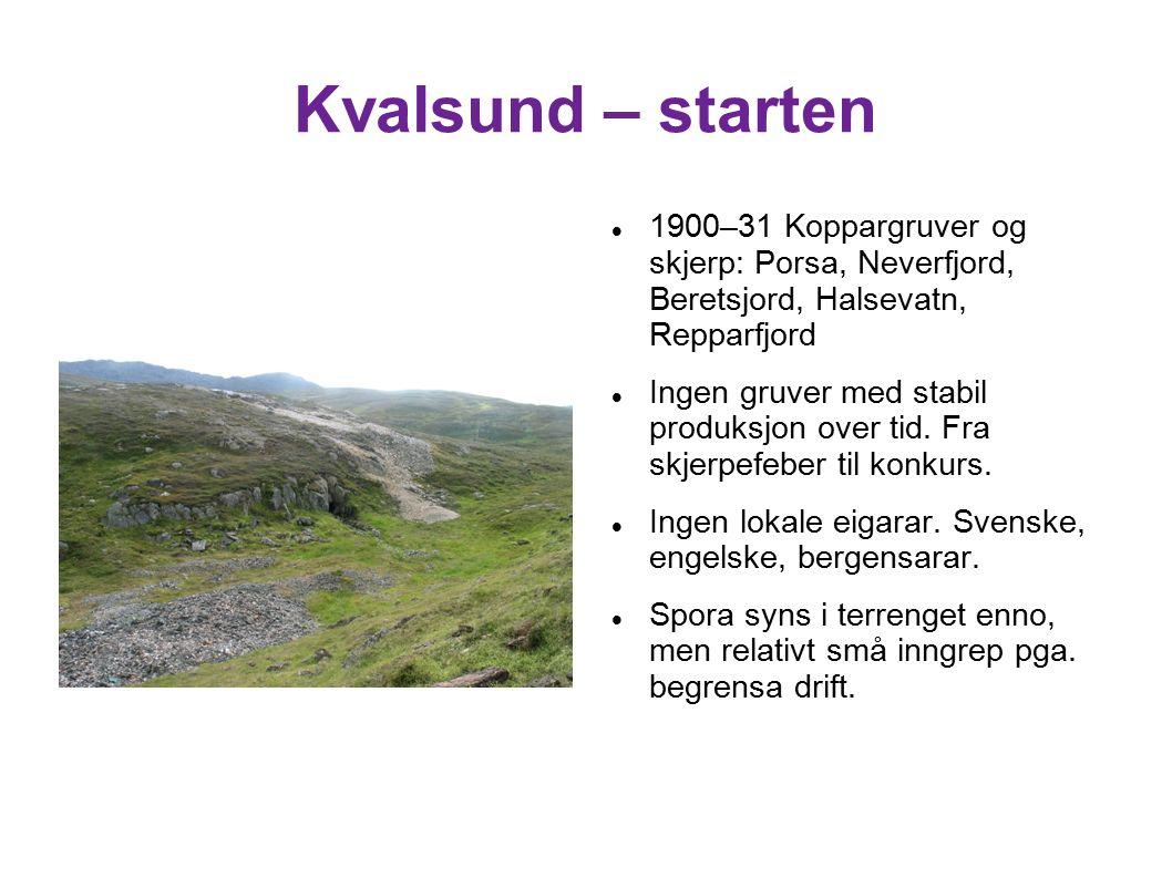 Kvalsund – starten 1900–31 Koppargruver og skjerp: Porsa, Neverfjord, Beretsjord, Halsevatn, Repparfjord Ingen gruver med stabil produksjon over tid.