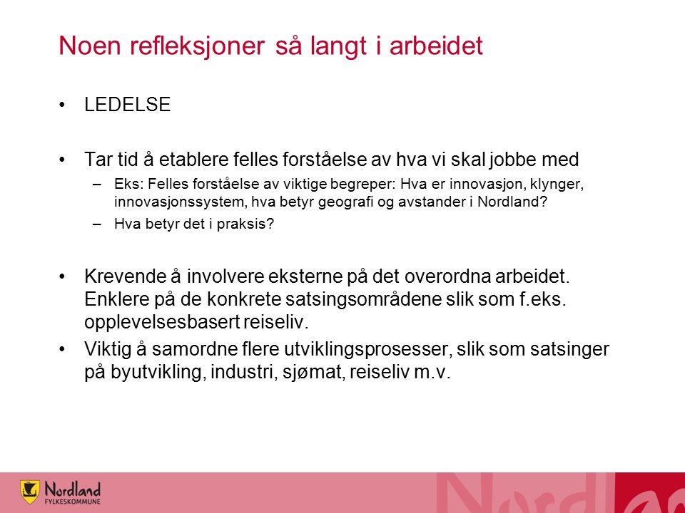 Noen refleksjoner så langt i arbeidet LEDELSE Tar tid å etablere felles forståelse av hva vi skal jobbe med –Eks: Felles forståelse av viktige begreper: Hva er innovasjon, klynger, innovasjonssystem, hva betyr geografi og avstander i Nordland.