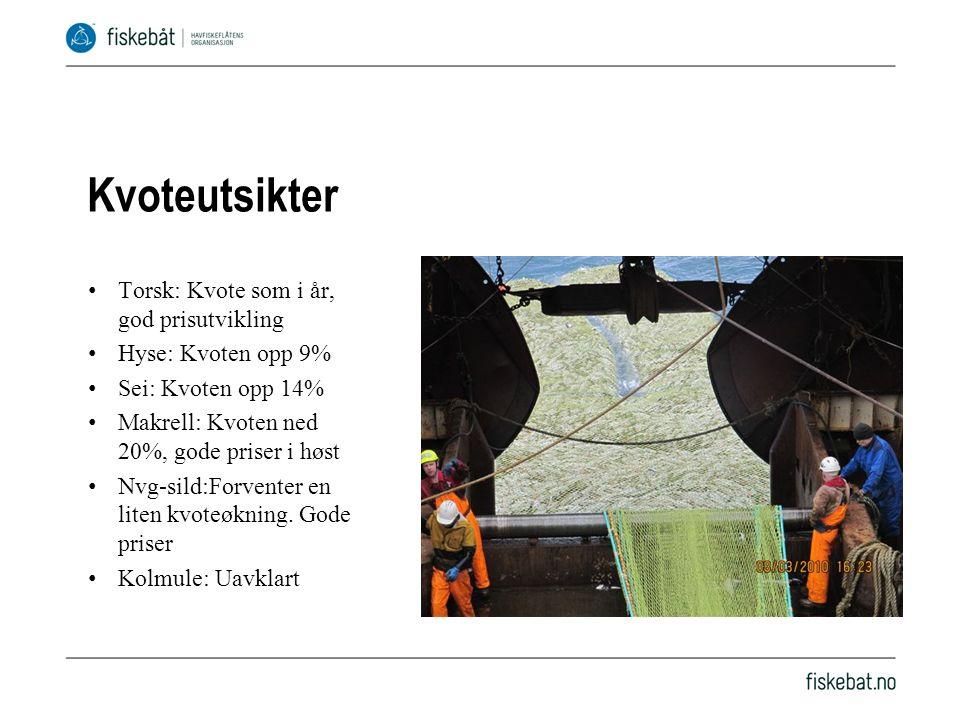 Kvoteutsikter Torsk: Kvote som i år, god prisutvikling Hyse: Kvoten opp 9% Sei: Kvoten opp 14% Makrell: Kvoten ned 20%, gode priser i høst Nvg-sild:Forventer en liten kvoteøkning.