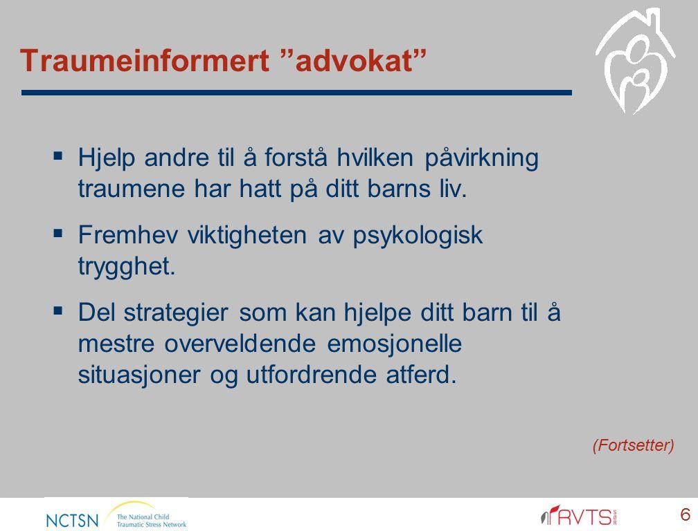"""Traumeinformert """"advokat""""  Hjelp andre til å forstå hvilken påvirkning traumene har hatt på ditt barns liv.  Fremhev viktigheten av psykologisk tryg"""