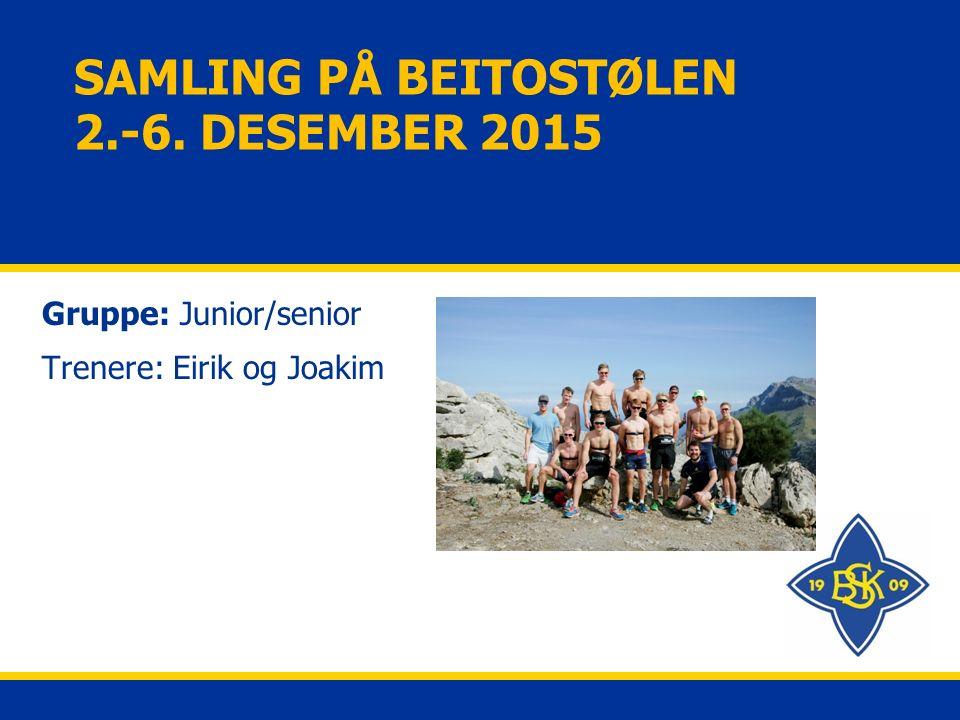 SAMLING PÅ BEITOSTØLEN 2.-6. DESEMBER 2015 Gruppe: Junior/senior Trenere: Eirik og Joakim