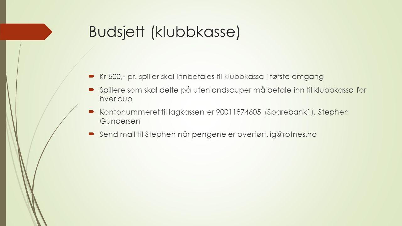 Budsjett (klubbkasse)  Kr 500,- pr.