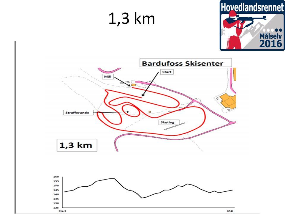 1,3 km