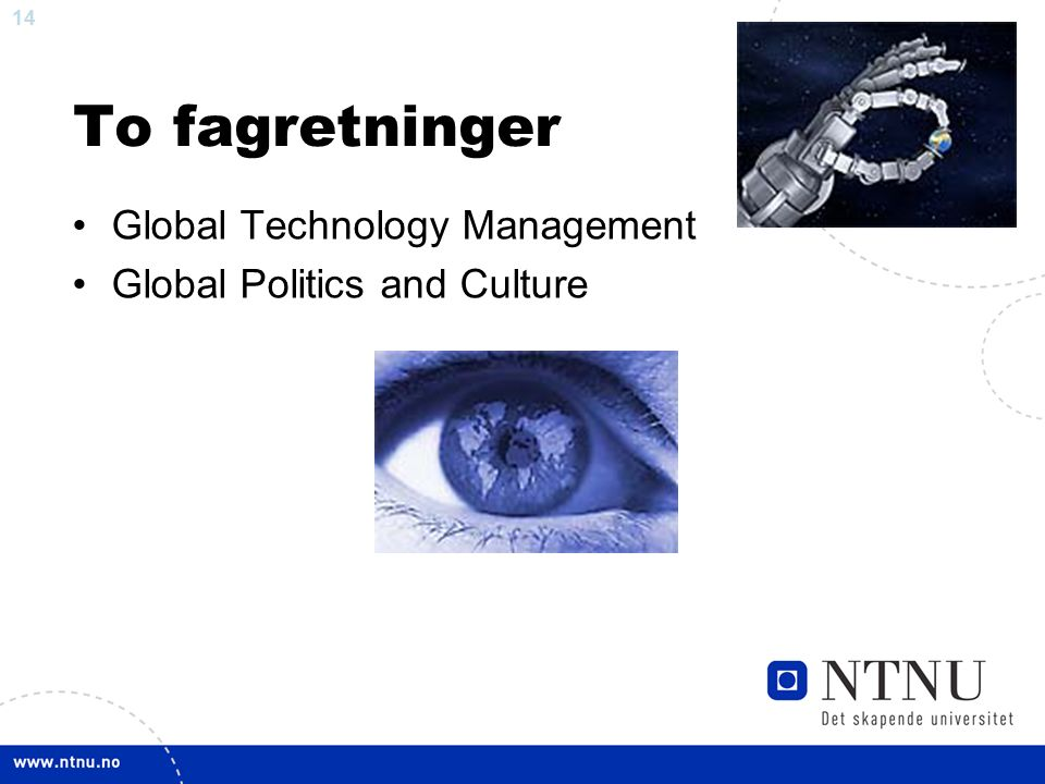 14 To fagretninger Global Technology Management Global Politics and Culture