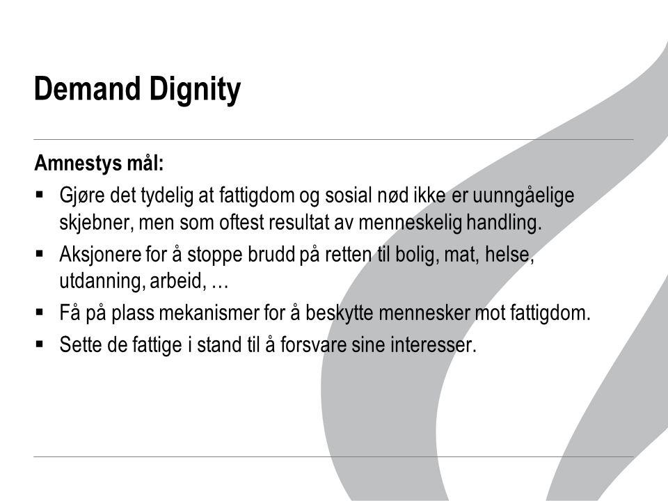 Demand Dignity Amnestys mål:  Gjøre det tydelig at fattigdom og sosial nød ikke er uunngåelige skjebner, men som oftest resultat av menneskelig handl