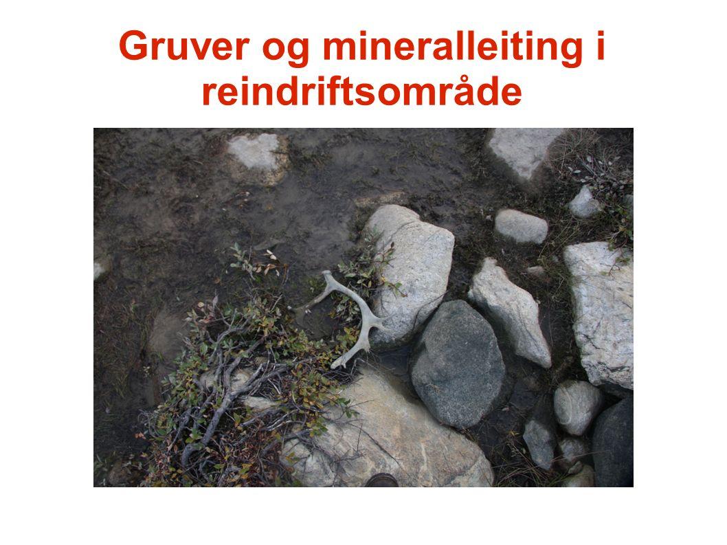 Gruver og mineralleiting i reindriftsområde