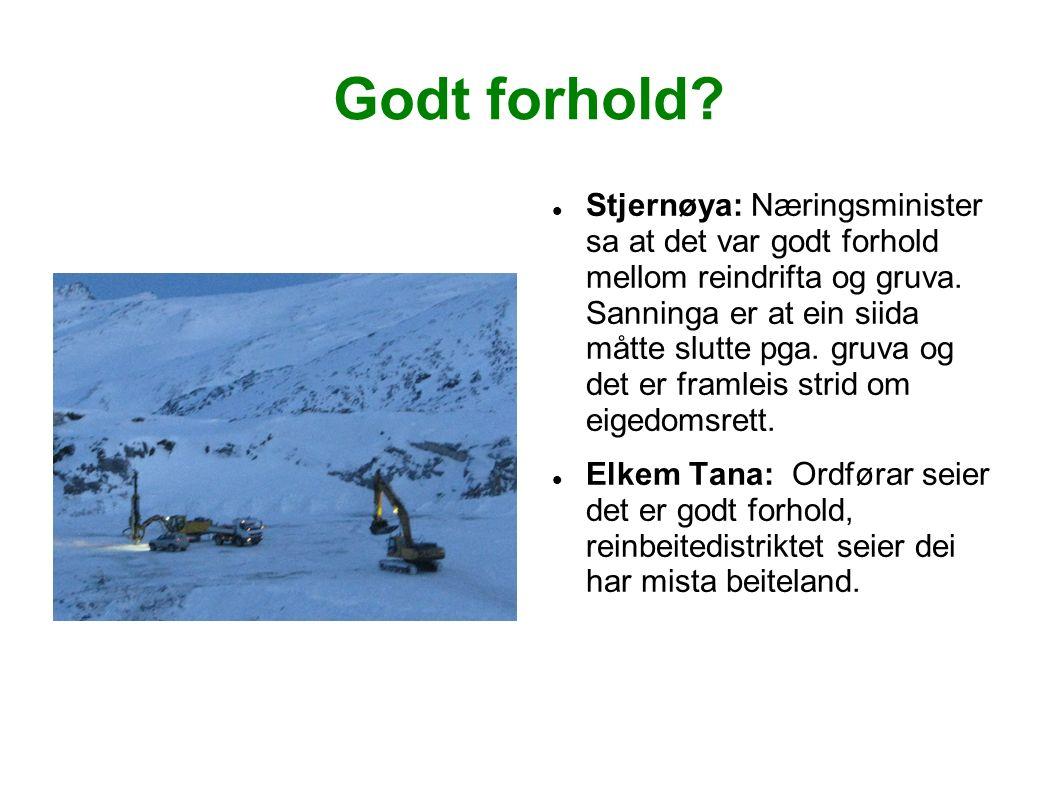 Godt forhold. Stjernøya: Næringsminister sa at det var godt forhold mellom reindrifta og gruva.