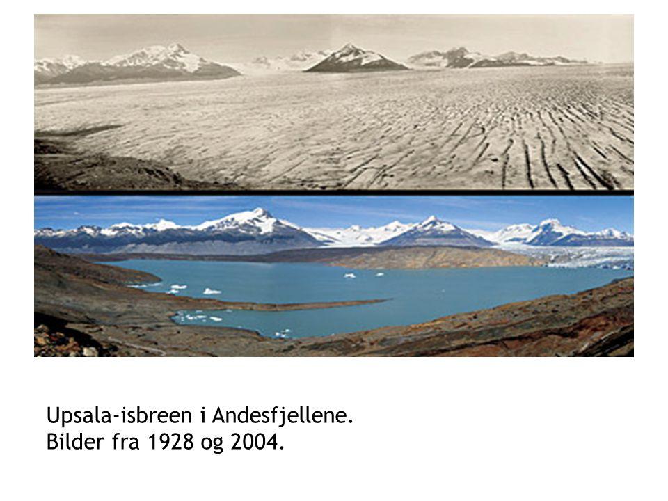 Upsala-isbreen i Andesfjellene. Bilder fra 1928 og 2004.