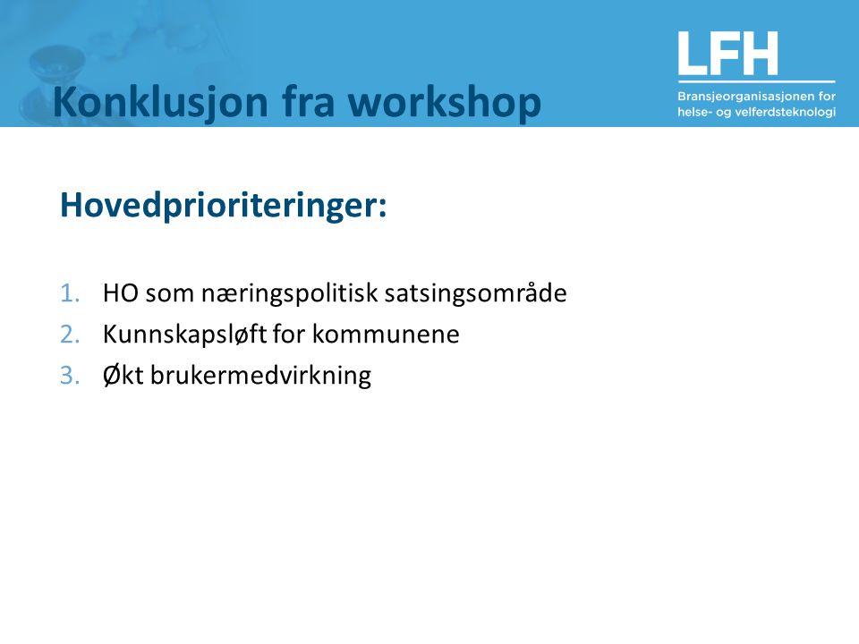 Konklusjon fra workshop Hovedprioriteringer: 1.HO som næringspolitisk satsingsområde 2.Kunnskapsløft for kommunene 3.Økt brukermedvirkning