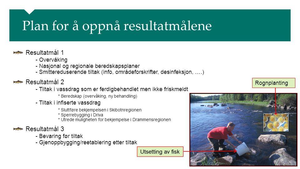 Plan for å oppnå resultatmålene Resultatmål 1 - Overvåking - Nasjonal og regionale beredskapsplaner - Smittereduserende tiltak (info, områdeforskrifter, desinfeksjon, ….) Resultatmål 2 - Tiltak i vassdrag som er ferdigbehandlet men ikke friskmeldt * Beredskap (overvåking, ny behandling) - Tiltak i infiserte vassdrag * Sluttføre bekjempelsen i Skibotnregionen * Sperrebygging i Driva * Utrede muligheten for bekjempelse i Drammensregionen Resultatmål 3 - Bevaring før tiltak - Gjenoppbygging/reetablering etter tiltak Rognplanting