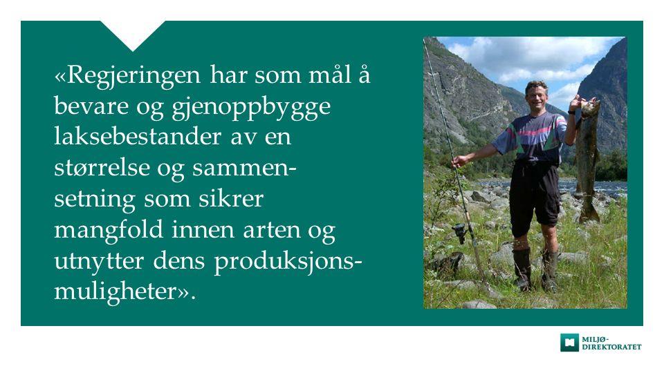 «Regjeringen har som mål å bevare og gjenoppbygge laksebestander av en størrelse og sammen- setning som sikrer mangfold innen arten og utnytter dens produksjons- muligheter».