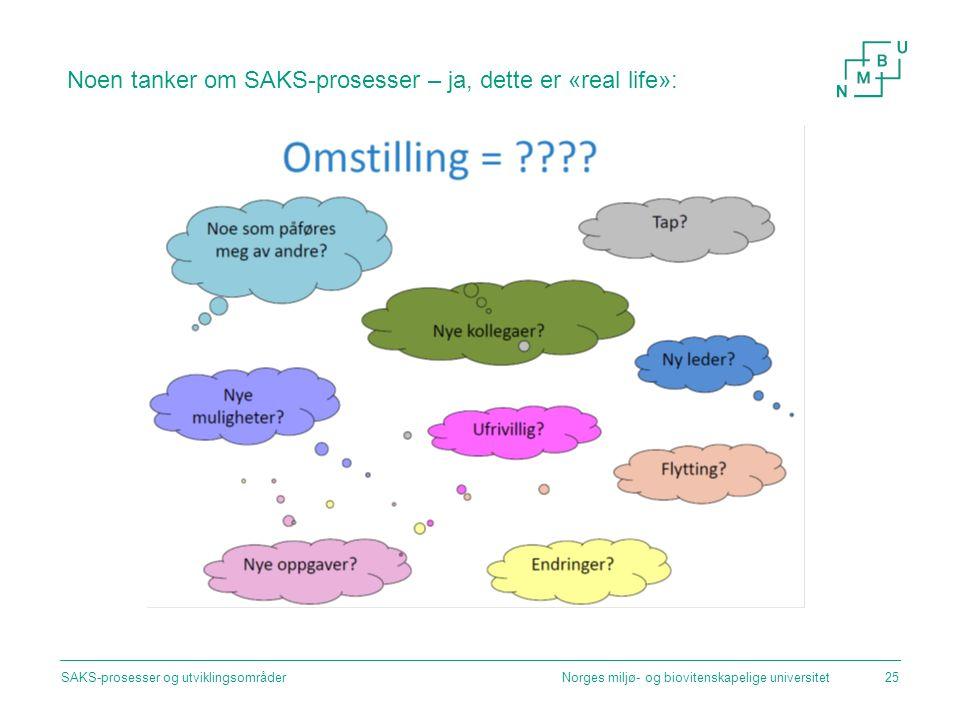 Noen tanker om SAKS-prosesser – ja, dette er «real life»: Norges miljø- og biovitenskapelige universitetSAKS-prosesser og utviklingsområder25