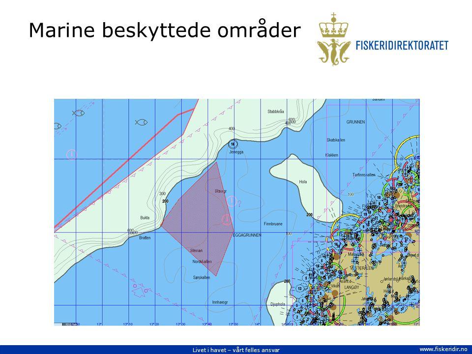 Livet i havet – vårt felles ansvar www.fiskeridir.no Marine beskyttede områder